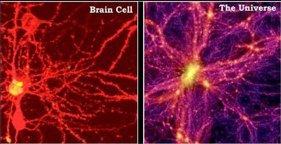 blog-universe-and-brain-cells