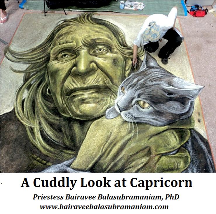 Capricorn Cuddle