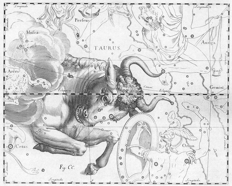 800px-Taurus_by_Johannes_Hevelius
