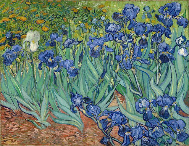 Vincent_van_Gogh_-_Irises_(1889)