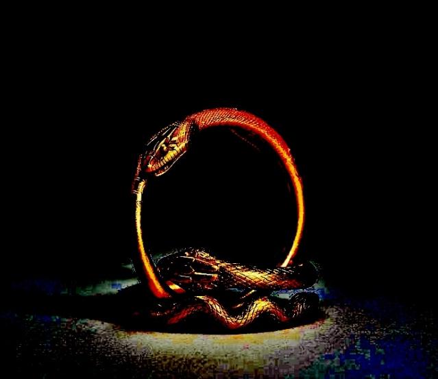 adjusted-snake